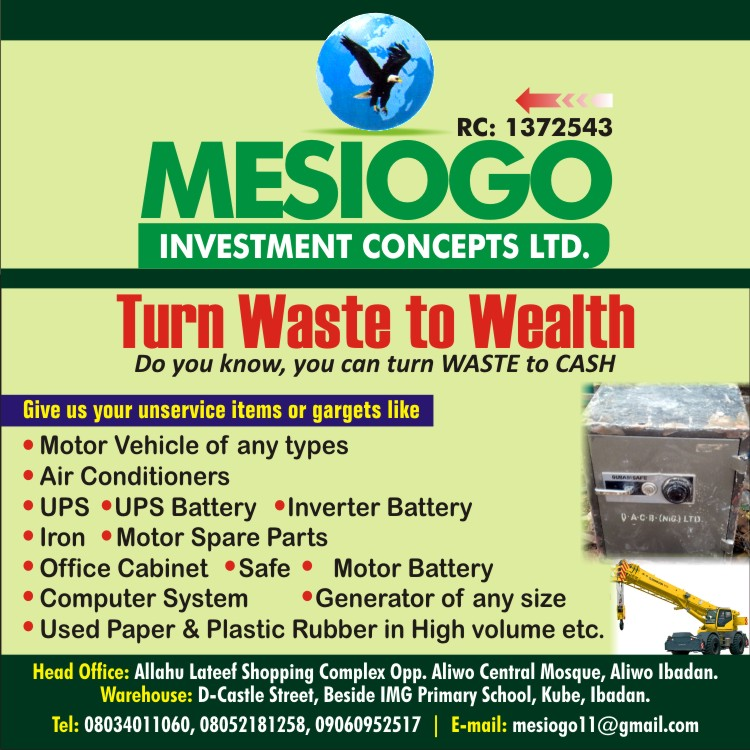 Mesiogo Investment Concepts ltd